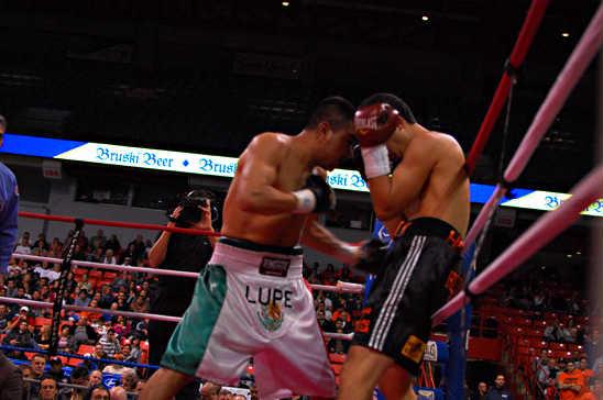 Guadalupe Diaz (L) drives Jaime Herrera to the ropes