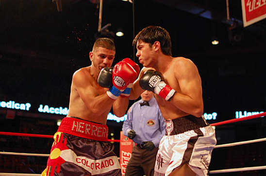 Omar Figueroa (R) lands a hook behind Marcos Herrera's guard out of his southpaw stance