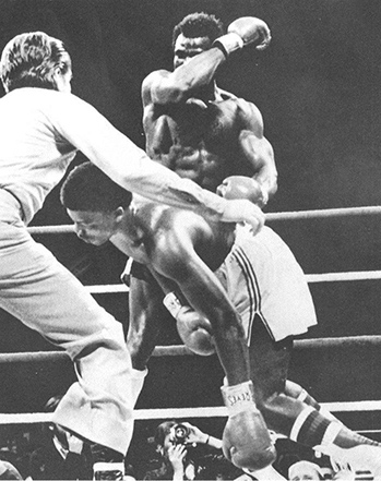 Weaver stopping John Tate to win the WBA heavyweight championship