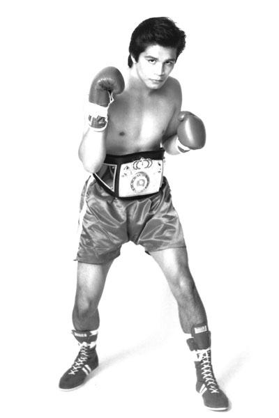 Boxer-2