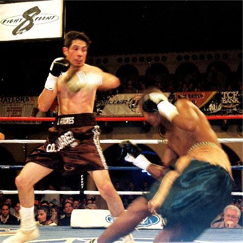 HernandezKnockdownSM (90k image)